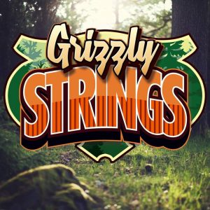 Grizzly Strings & Accessories
